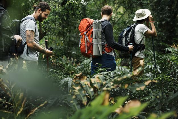 折りたたみ式のトレッキングポールがおすすめ – 登山で便利
