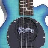 ピグノーズのギターはトラベルギター